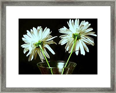 Fan Flare Framed Print
