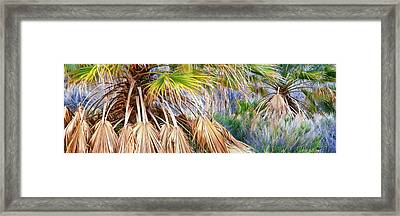 Fan Palms Thrives Near Cottonwood Framed Print by Panoramic Images