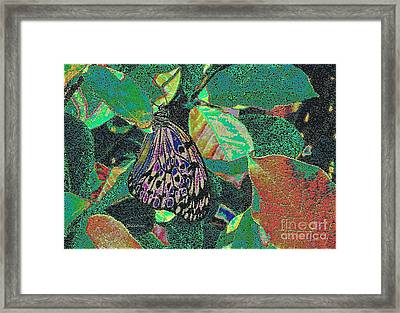Framed Print featuring the photograph Fanciful by Kathie Chicoine