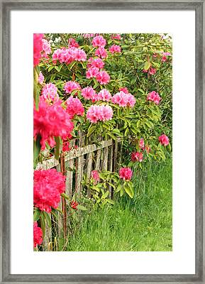 Fancy Fence Framed Print