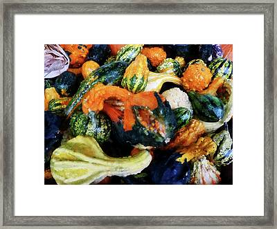 Fancy Gourds Framed Print by Susan Savad