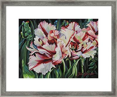 Fancy Parrot Tulips Framed Print