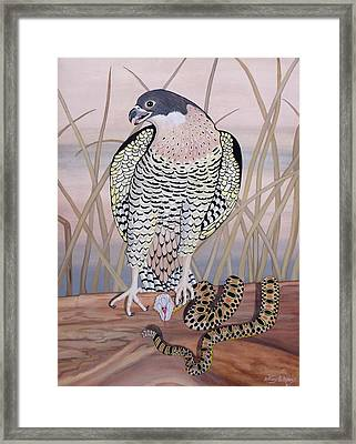 Fang And Feather Framed Print by Anthony Morris