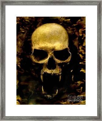Fangs Framed Print by Tom Straub