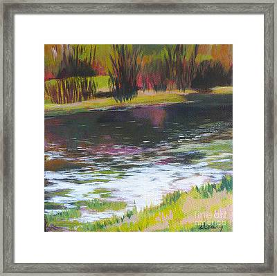 Fanno Creek Beaverton Framed Print by Melody Cleary
