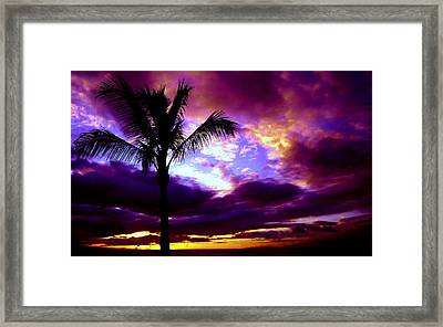Fantastic Colors Framed Print