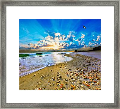 Framed Print featuring the photograph Fantasy Art-birds Flying Into Sunset Over Shell Covered Beach by Eszra