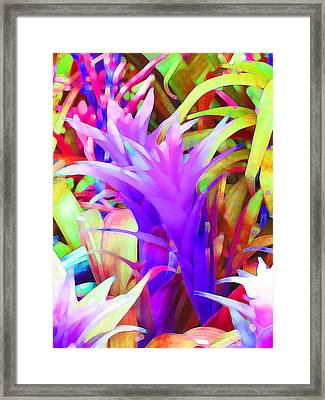 Fantasy Bromeliad Abstract Framed Print