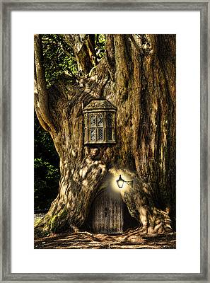 Fantasy Fairytale Miniature House In Tree In Forest Framed Print by Matthew Gibson