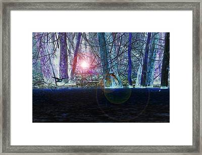Fantasy Flight Framed Print by Valarie Davis