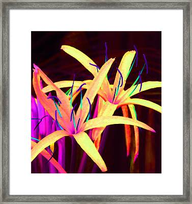 Fantasy Flowers 7 Framed Print by Margaret Saheed