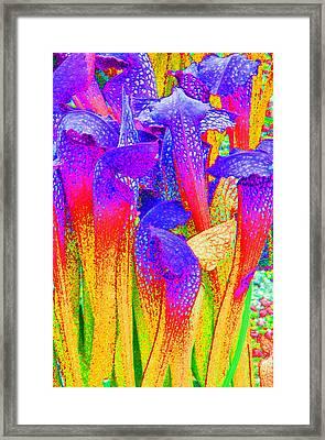 Fantasy Flowers Framed Print by Margaret Saheed
