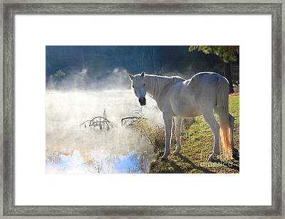 Fantasy Fog Framed Print by Leslie Kirk