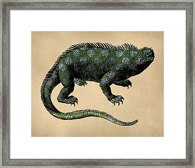 Fantasy Iguana Vintage Illustration Framed Print by Flo Karp
