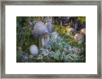 Fantasy In Miniature Framed Print