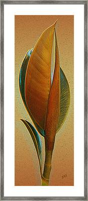 Fantasy Leaf Framed Print by Ben and Raisa Gertsberg