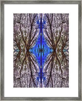 Fantasy Life Framed Print