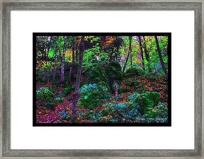 Framed Print featuring the photograph Fantasy by Michaela Preston