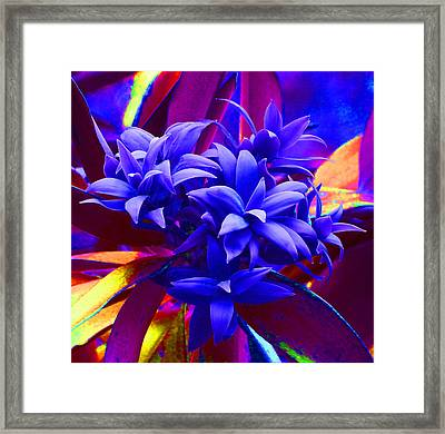 Fantasy Pine Framed Print by Margaret Saheed