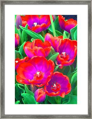Fantasy Tulip Abstract Framed Print by Margaret Saheed