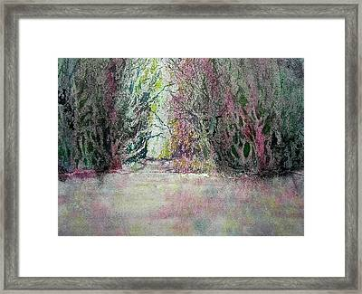 Fantasy Waterfall Framed Print by Carolyn Rosenberger