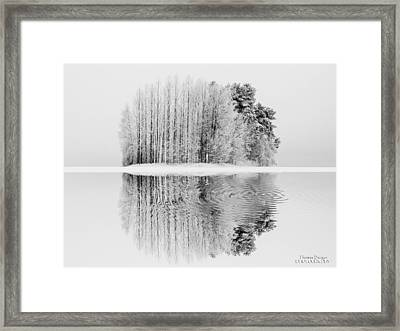 Fantasy2 Framed Print by Thomas Berger