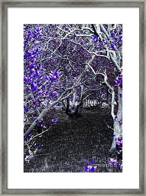 Fantasywood Framed Print
