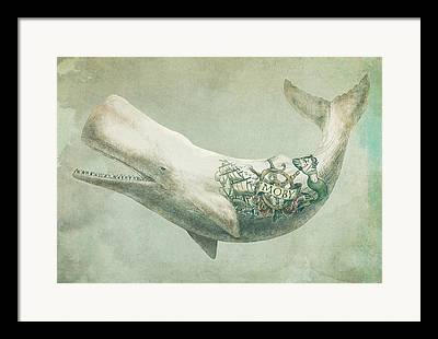 Whale Framed Prints