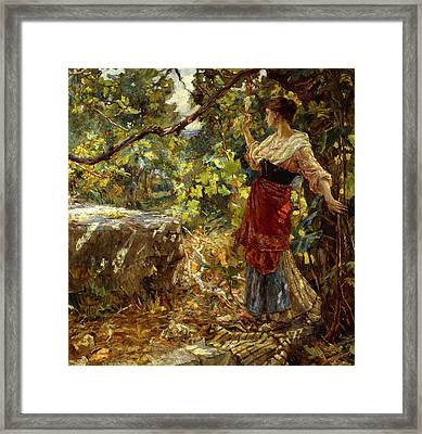 Faraway Thoughts Framed Print by Alessandro Battaglia
