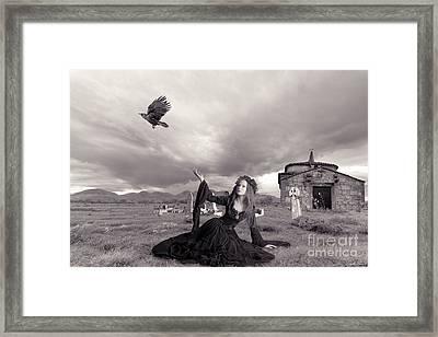 Farewell My Love 2 Framed Print by Linda Lees