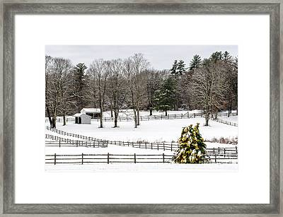Framed Print featuring the photograph Horse Farm And The Tree by Mike Ste Marie