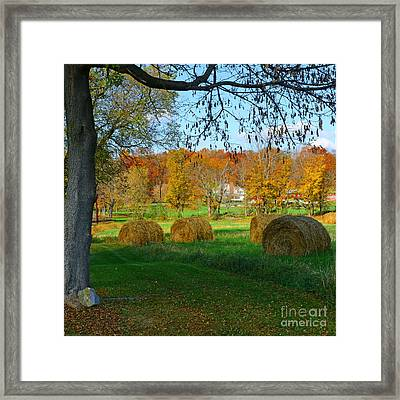 Farm - Autumn Harvest Framed Print by Paul Ward