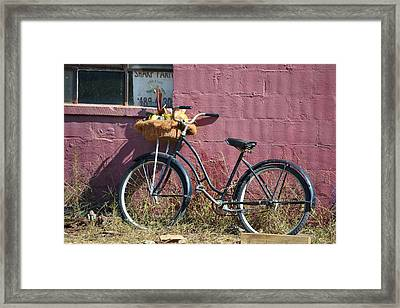 Farm Bicycle Framed Print by Mary Zeman
