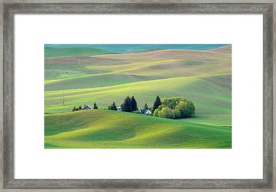 Farm Buildings Nestled In The Palouse Country Framed Print