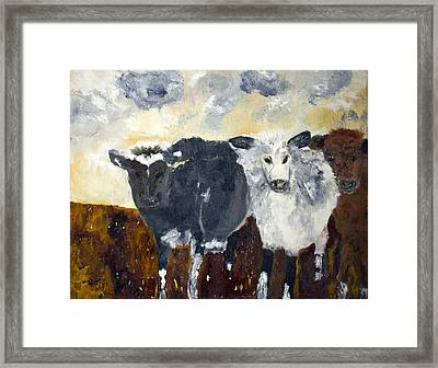 Farm Cows Framed Print