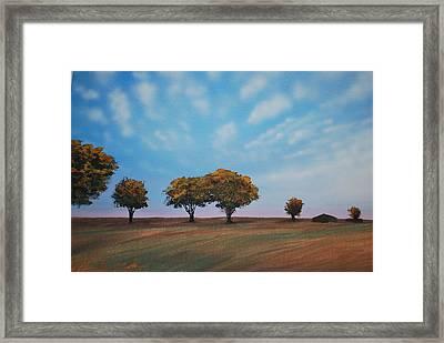Farm Framed Print by DC Decker