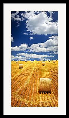 Saskatchewan Photographs Framed Prints