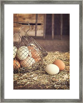 Farm Fresh Eggs Framed Print by Edward Fielding