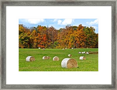 Farm Fresh Hay Framed Print by Frozen in Time Fine Art Photography