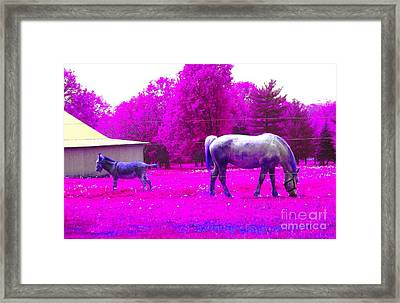 Framed Print featuring the photograph Farm Friends - Animals by Susan Carella