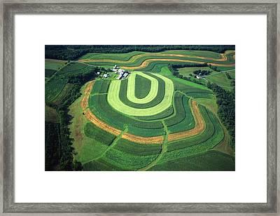 Farm Greens And Hillside Contour Plowing Framed Print by Blair Seitz