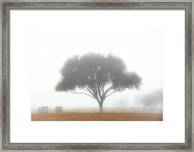 Farm On A Foggy Morning Framed Print