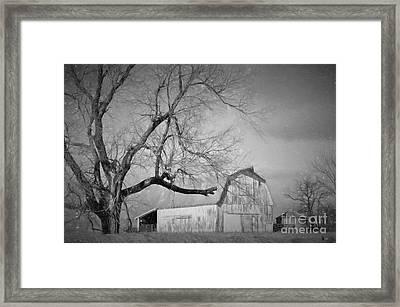 Farm Life  Framed Print