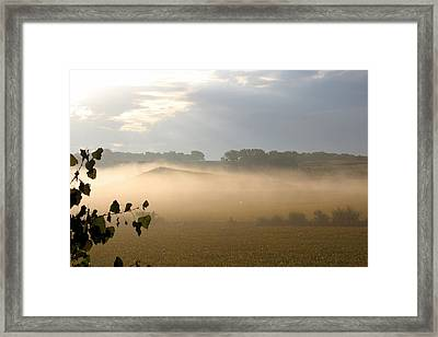 Farm Morning By Angieclementine Framed Print by Angie Phillips
