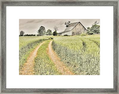 Farm On Diamondview Road Framed Print