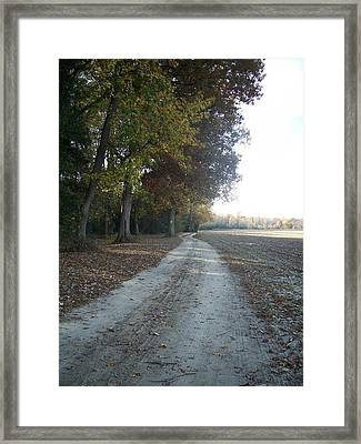 Lonesome Pathway Framed Print