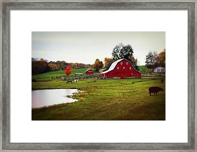 Farm Perfect Framed Print by Marty Koch