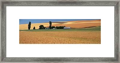 Farm, Saint John, Washington State, Usa Framed Print by Panoramic Images