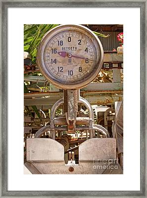 Framed Print featuring the photograph Farm Scale by Kerri Mortenson