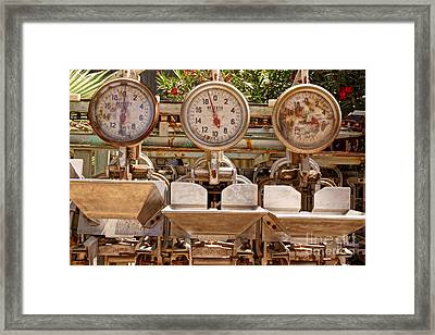 Farm Scales Framed Print by Kerri Mortenson